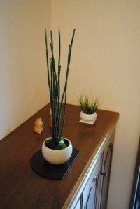 涼しげなトクサの情景盆栽 盆栽